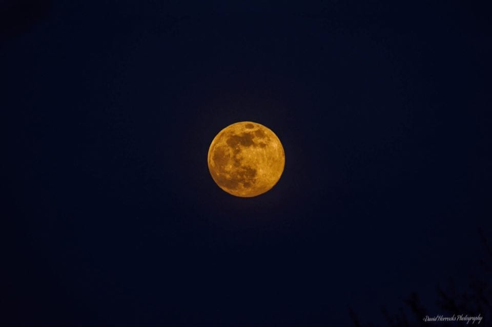The Moon Is Rusting – Surely, NASA Needs a Corrosion Specialist