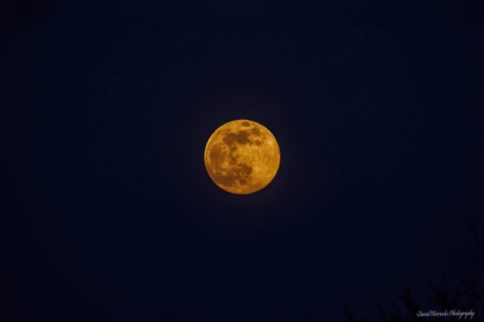 moon is rusting